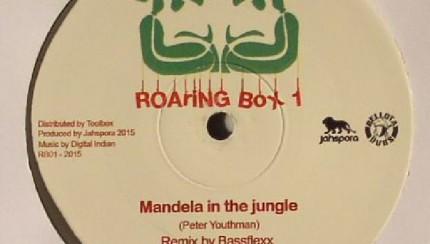 Peter Youthman, Bassflexx - Mandela In the Jungle